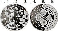 Изображение Монеты Беларусь 1 рубль 2017 Медно-никель Proof-