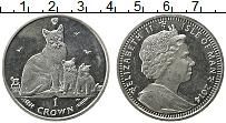 Изображение Монеты Остров Мэн 1 крона 2014 Медно-никель UNC Елизавета II. Кошка