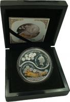 Изображение Подарочные монеты Фиджи Год кролика 2011 Серебро Proof