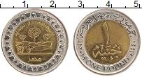 Изображение Монеты Египет 1 фунт 2019 Биметалл UNC- Новая египетская сел
