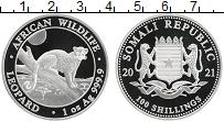 Изображение Монеты Сомали 100 шиллингов 2021 Серебро Proof Леопард