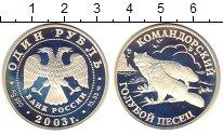 Изображение Монеты СНГ Россия 1 рубль 2003 Серебро Proof-