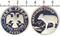 Изображение Монеты Россия 1 рубль 2002 Серебро Proof-
