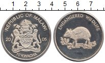 Изображение Монеты Малави 10 квач 2005 Посеребрение Proof- Охрана дикой природы