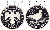 Изображение Монеты Россия 1 рубль 1999 Серебро Proof