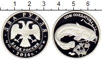 Изображение Монеты СНГ Россия 2 рубля 2014 Серебро Proof