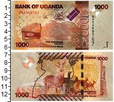 Изображение Банкноты Уганда 1000 шиллингов 2013  UNC