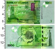 Продать Банкноты Уганда 5000 шиллингов 2013