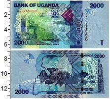 Изображение Банкноты Уганда 2000 шиллингов 2010  UNC