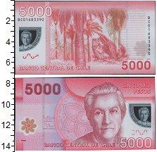 Изображение Банкноты Южная Америка Чили 5000 песо 2012  UNC
