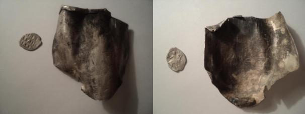 чешуя + серебряная пластина