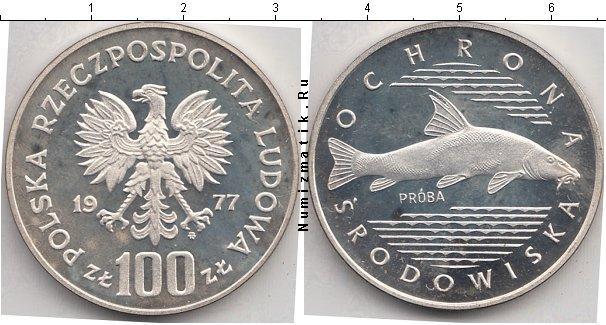 Каталог монет - Польша 100 злотых