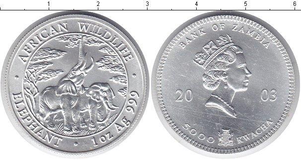 Каталог монет - Замбия 5000 квач