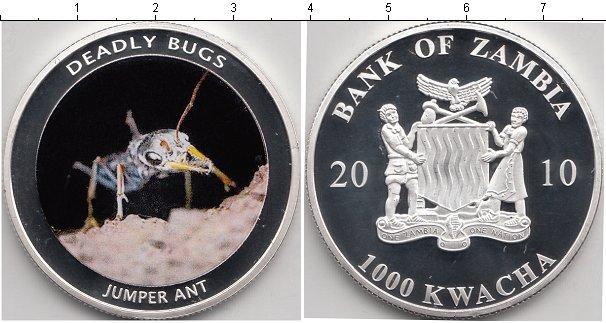 Каталог монет - Замбия 1000 квач