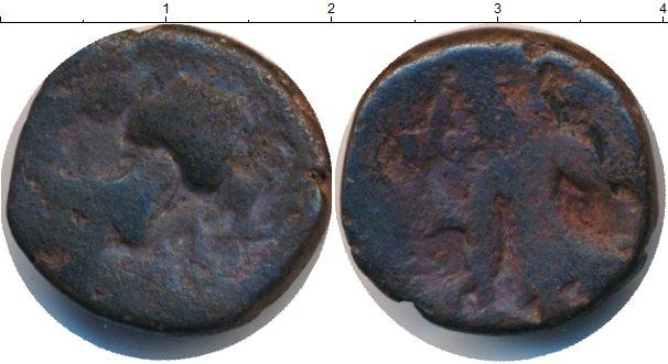 Каталог монет - Индия 1 драхма