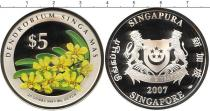 Каталог - подарочный набор  Сингапур Прекрасные цветы