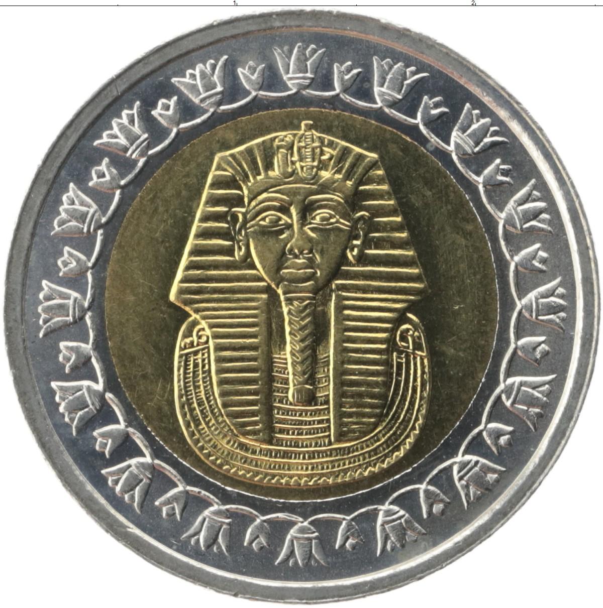 аксон, завернутый египет фунт фото этого дальнейшие сеансы