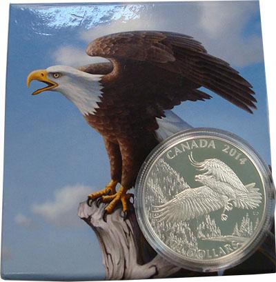 Изображение Подарочные наборы Канада Белоголовый орлан 2014 Серебро UNC Монета номиналом 100