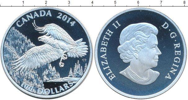 Картинка Подарочные наборы Канада Белоголовый орлан Серебро 2014