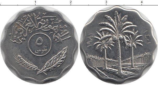 Картинка Дешевые монеты Ирак 5 филс Сталь 1981