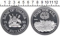 Изображение Монеты Уганда 5.000 шиллингов 1995 Серебро Proof 50  лет  ФАО.