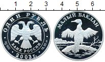 Изображение Монеты Россия 1 рубль 2003 Серебро Proof