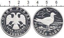 Изображение Монеты Россия 1 рубль 1999 Серебро Proof Розовая чайка