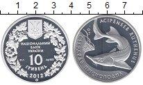 Изображение Монеты Украина 10 гривен 2012 Серебро Proof Стерлядь пресноводна