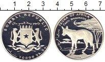 Изображение Монеты Сомали 10.000 шиллингов 1998 Серебро Proof шакал