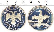 Изображение Монеты Россия 1 рубль 2003 Серебро Proof-