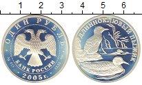 Изображение Монеты Россия 1 рубль 2005 Серебро Proof- Длинноклювый  пыжик