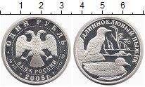 Изображение Монеты Россия 1 рубль 2005 Серебро Proof Длинноклювый пыжик
