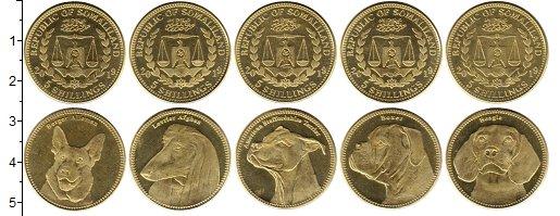 Изображение Наборы монет Сомалиленд 5 шиллингов 2019 Латунь UNC В наборе 5 монет ном
