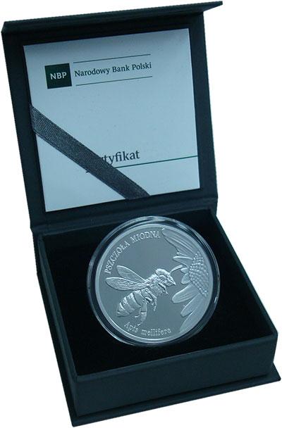 Изображение Подарочные монеты Польша 20 злотых 2015 Серебро Proof Пчела. Оригинальная