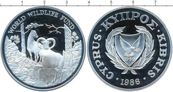 Картинка Монеты Кипр 1 фунт Серебро 1986