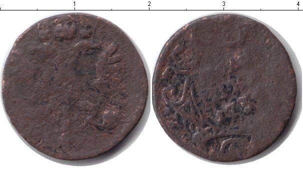 Картинка Дешевые монеты Россия полушка Медь 1736