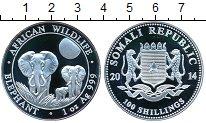 Изображение Монеты Сомали 100 шиллингов 2014 Серебро Proof-